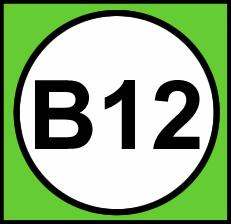 Mangler du B12 vitamin