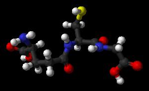 Glutathione molekyle